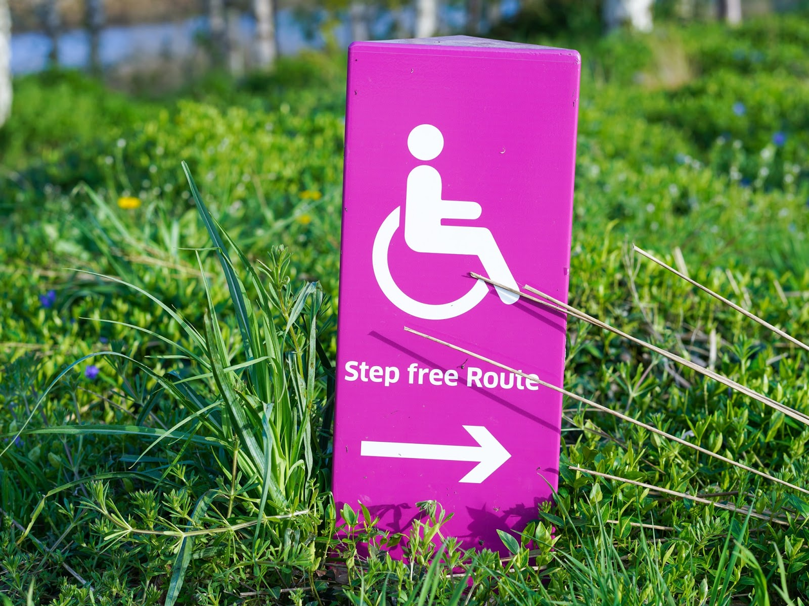 does-your-business-need-ada-compliant-signs_identity-group